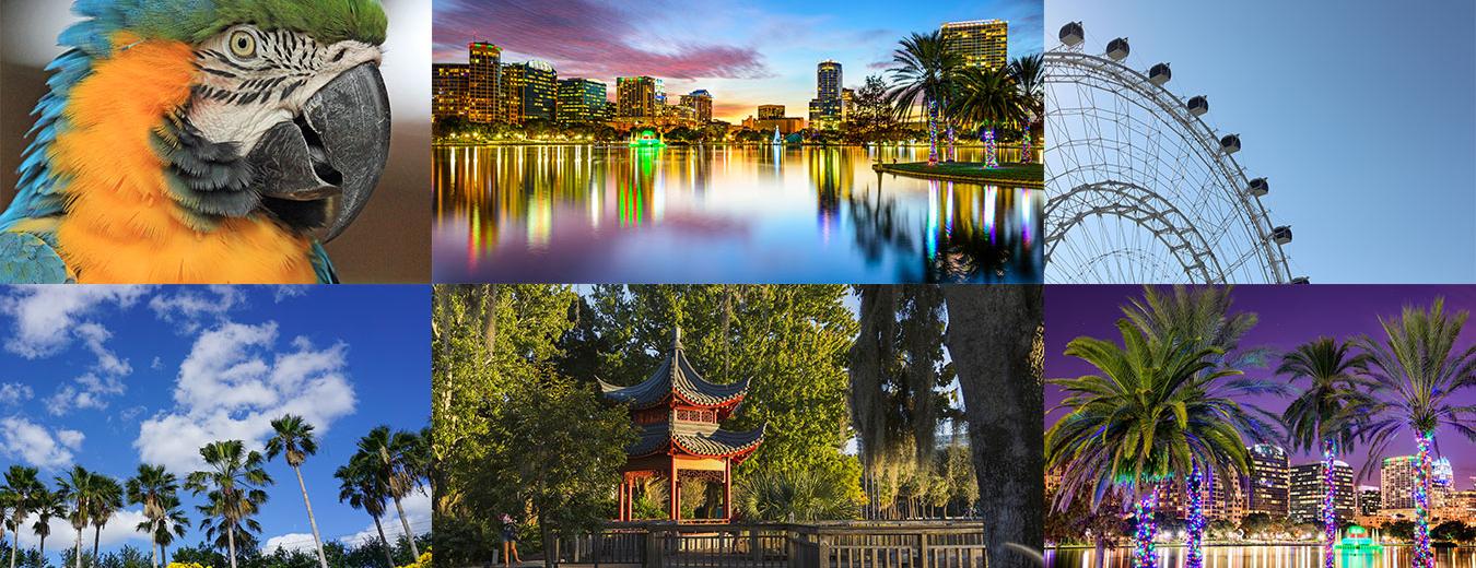 Orlando Destination Management Services - Event & Party